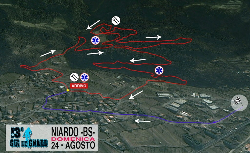 NIARDO_3D_CON_SIMBOLI