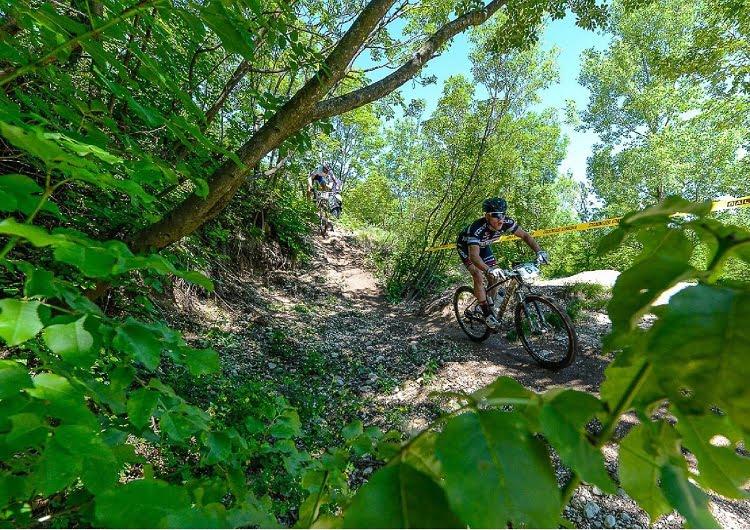baldo_bike