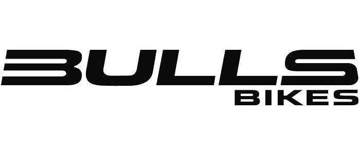 bulls-logo