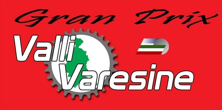 valli-varesine-logo