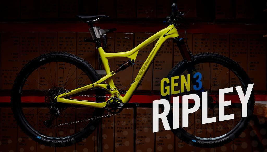 ripley-3