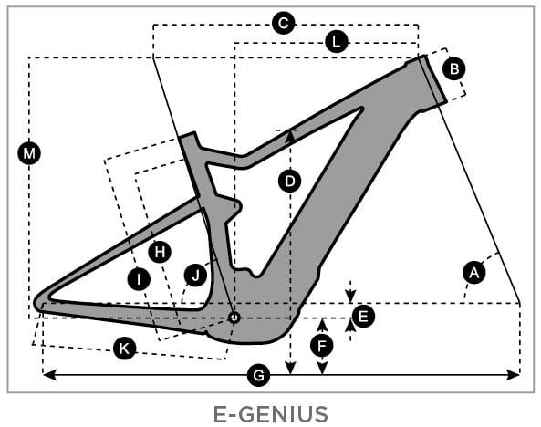 Y18_E-Genius