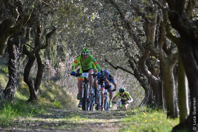 Bardolino Bike 2015