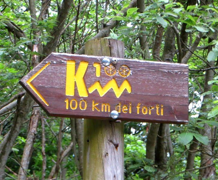 50 km Folgaria (4)