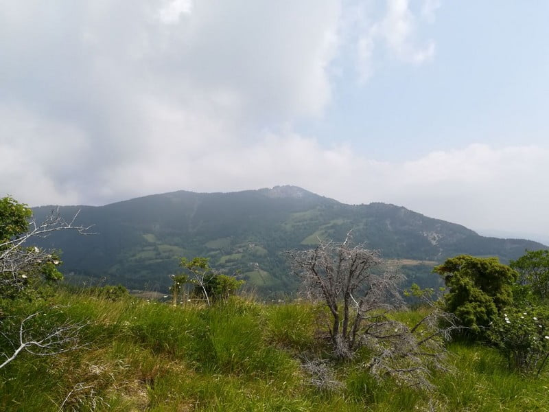 Monte Cimone 2